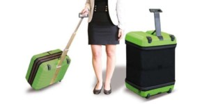 luggage-chic-sophistic